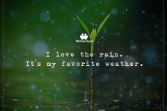 Whatsapp-monsoon-quotes