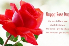 Happy-Rose-Day-Status-On-Images-768x444