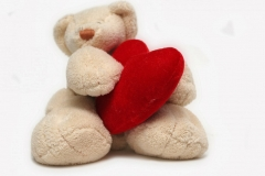 Happy teddy day 2014.HD Wallpapers and pics.lovely teddy with heart