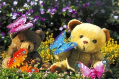 Happy teddy day 2014.HD Wallpapers and pics.teddy bears with butter flies