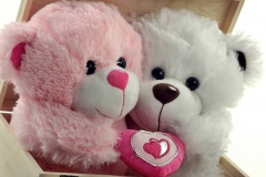 Love Teddy Bear Wallpapers - Wallpapers(1)