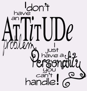 I-dont-have-an-attitude-problem-whatsapp-dp-983x1024-288x300