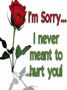 I_Am_Sorry_Red_Rose-whatsapp-dp-225x300