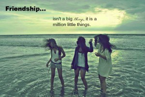 friendship-is-not-a-big-thing-whatsapp-dp-300x201