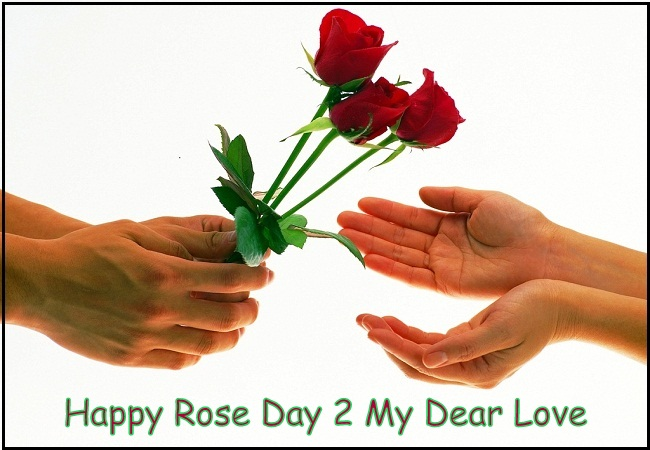 Top Happy Rose Day Wishes For Her