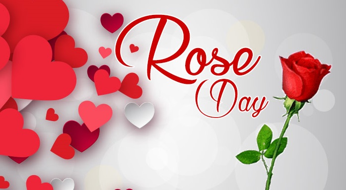 Top 20 Rose Day Status for Whatsapp and Facebook